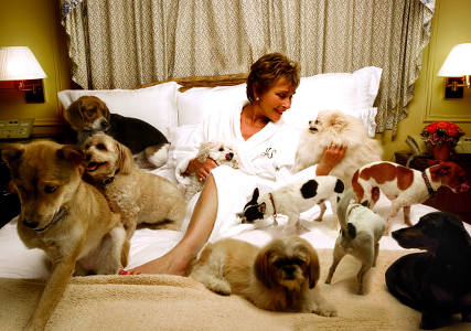 judge-judy-with-pets